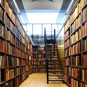 Библиотеки Ленска